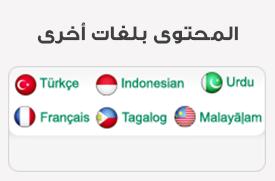 لغات أخرى