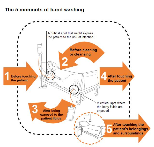 who 5 moments of hand hygiene guidelines